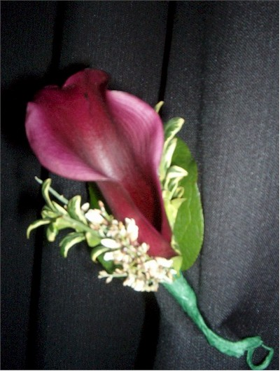 wedding boutonniere, corsage - CO04 CD $25